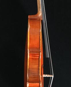 viola de estudio Müller Virtuoso