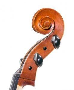 Cello-Corina-Duetto cabeza
